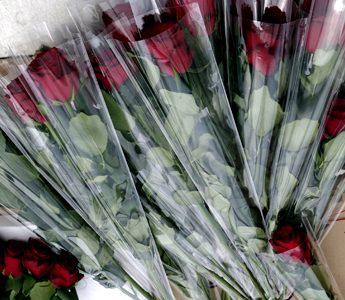 bolsas para rosas botella duran